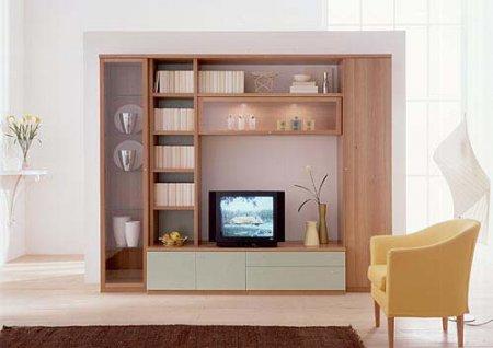 Need Tv Cabinet Designs Indusladies
