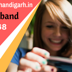 connect broadband chandigarh internet users