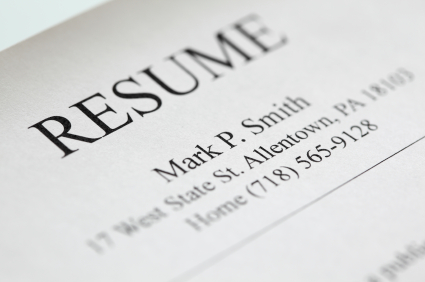 More FREE Resume Templates   Primer