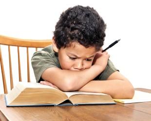 Study Hard and Study Smart