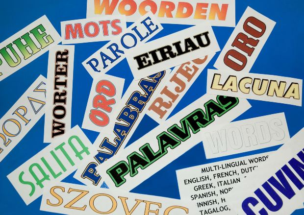 Tips on Teaching Languages to an Infant