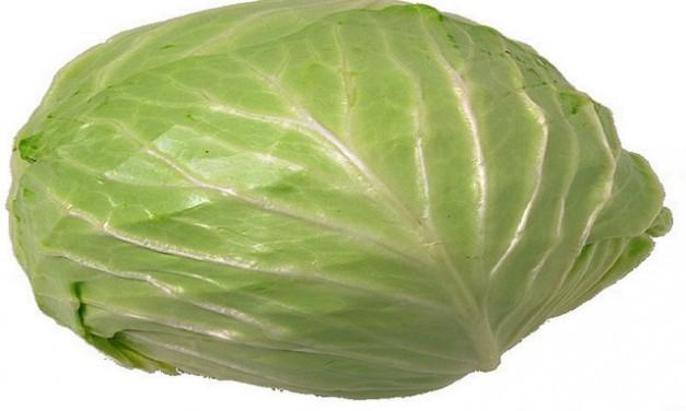 Amazing Health Benefits of Cabbage